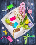 Easter eggs in white tray with sign,holiday decoration and hyacinth flowers on blue wooden background Stock Photo