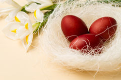 Easter eggs in the whitish nest and white flowers. On the beige table Stock Image