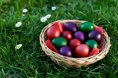 Easter Eggs in Wicker Basket Stock Photo