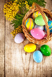 Easter eggs in wicker basket and branch mimisa Royalty Free Stock Photos