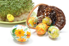 Easter eggs in wicker basket and cuckoo flower Royalty Free Stock Image
