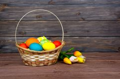 Easter eggs in wicker basket, red and yellow tulips on wooden boards. stock image