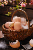 Easter eggs in wicker basket on wooden background Royalty Free Stock Photos