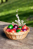 Easter Eggs in Wicker Basket on Wooden Table Stock Photography
