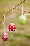 Easter eggs. On willow branch Stock Photos