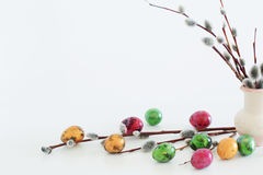 Easter eggs and willow branches on  white background Stock Images
