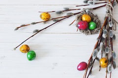 Easter eggs and willow branches on white background Royalty Free Stock Image