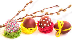 Easter eggs and willow branches on white. royalty free stock photography