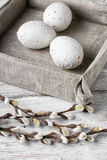 Easter eggs and willow Royalty Free Stock Photos