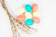 Easter eggs with a willow Royalty Free Stock Photo