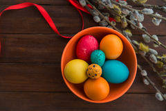 Easter eggs and willow tree Royalty Free Stock Images