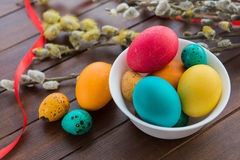 Easter eggs and willow tree Stock Image