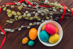 Easter eggs and willow tree Stock Photos