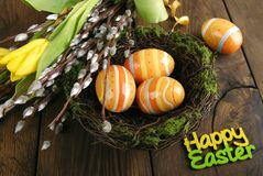 Easter eggs, willow and tulip Stock Images