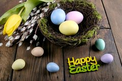 Easter eggs, willow and tulip Stock Photo