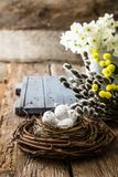 Easter concept on wood Royalty Free Stock Photo