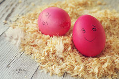 Easter eggs on wood sawdust. Two amusing Easter eggs with the drawn persons. Royalty Free Stock Images