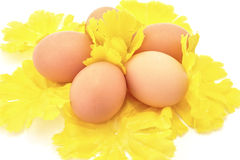 Easter eggs on yellow Royalty Free Stock Photo