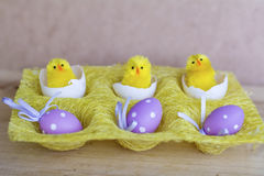 Easter eggs and yellow easter chickens in basket Stock Photo