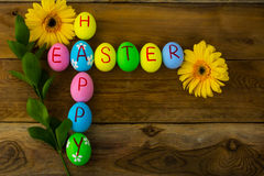 Easter eggs and yellow flowers Royalty Free Stock Photography