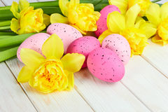 Easter eggs with Yellow narcissus Stock Image