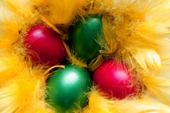 Easter eggs in the yellow  nest Royalty Free Stock Image