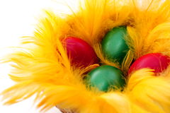 Easter eggs in the yellow  nest Stock Images