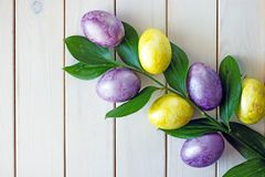 Easter eggs of yellow and purple and green branch of green with large leaves. royalty free stock photography