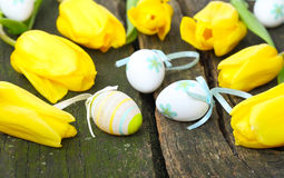 Easter eggs and yellow tulips Stock Photo