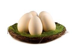 Easter egss Stock Photo