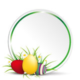 Easter Egss in Gras With Flowers Green Circle New Stock Photos