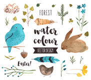 Easter Elements Watercolor Vector Objects Royalty Free Stock Image