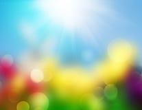 Easter för bakgrund för vårsommarnatur suddighet Arkivbild