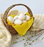 Eggs basket food farm products. Easter farmlife organic natural Stock Photography