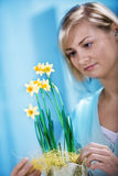 Easter feeling Royalty Free Stock Images