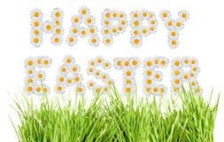 Easter feliz Fotografia de Stock