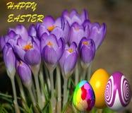 Easter feliz - cartão Fotografia de Stock