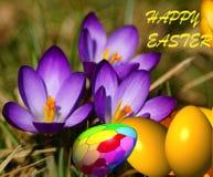Easter feliz - cartão. Fotos de Stock