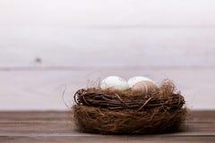Easter feliz! Os ovos da páscoa bonitos são decorados em cores da cama em um ninho em um fundo de madeira Páscoa conceptual imagens de stock