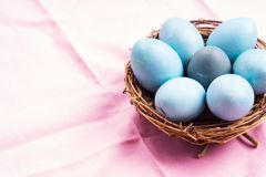 Easter festive banner for text with eggs on pink. Easter festive banner for text with blue boiled eggs on pink table cloth with succulent plant. Flat lay banner stock photography