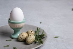 Easter  festive table setting with  gray plate, quail eggs  and chicken egg standing in the egg cup with leaf sprigs of eucalyptus. On a gray concrete Stock Photography