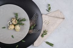 Easter  festive table setting with  gray plate, quail eggs leaf sprigs of eucalyptus. On a gray concrete background Royalty Free Stock Photo