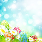 Easter Field Stock Images
