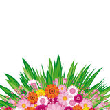 Easter Floral background royalty free stock image