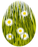 Easter floral egg Stock Image