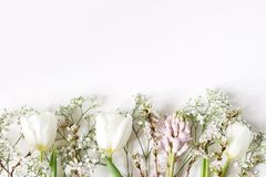Easter floral frame, web banner. Spring wedding, birthday composition with pink hyacinth, cherry blossoms, white tulips royalty free stock photo