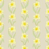 Easter Floral Seamless Pattern Stock Image