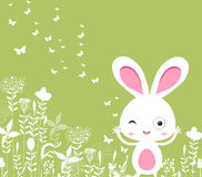 Easter florals with bunny Royalty Free Stock Image