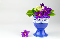 Easter flower arrangement in egg-cup Stock Photos