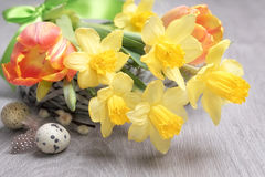 Easter flower arrangement with yellow daffodils Stock Images